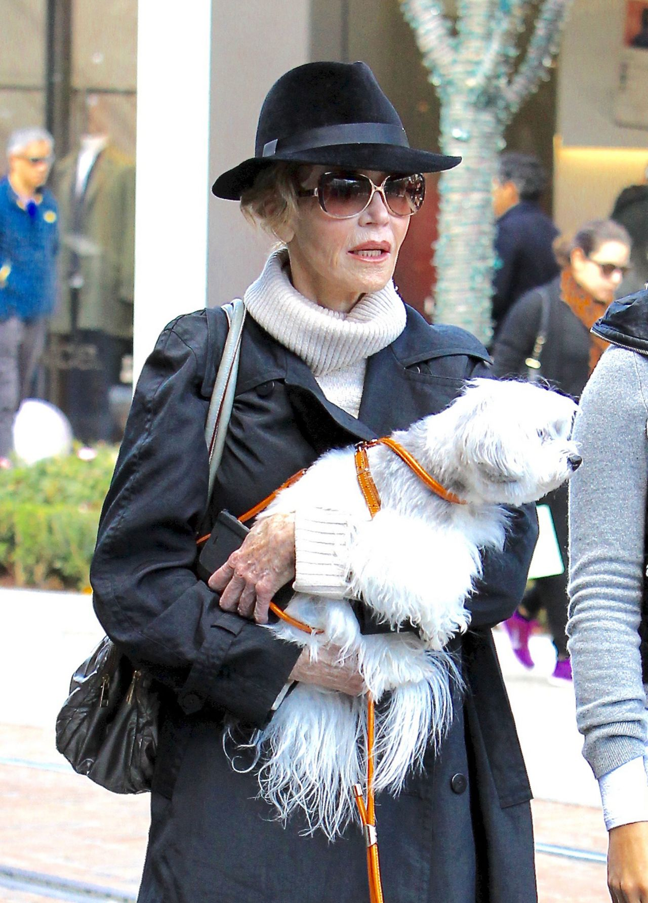 Jane Fonda - Shops With Her Dog At The Grove In Los -7492