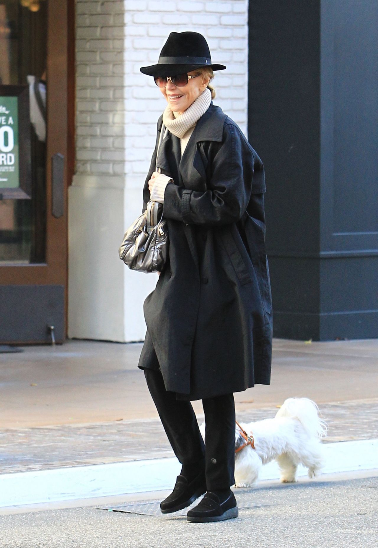 Jane Fonda - Shops With Her Dog At The Grove In Los -2556