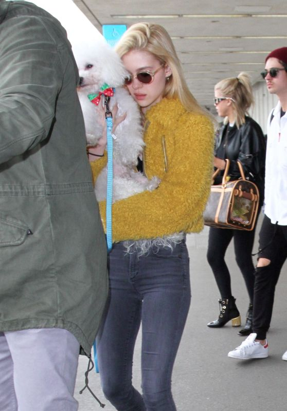 Nicola Peltz - Arrives in Los Angeles 1/4/ 2017