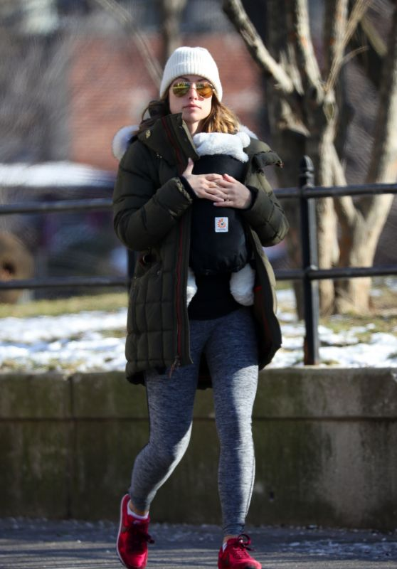 Olivia Wilde - Out in Brooklyn, New York 1/15/ 2017