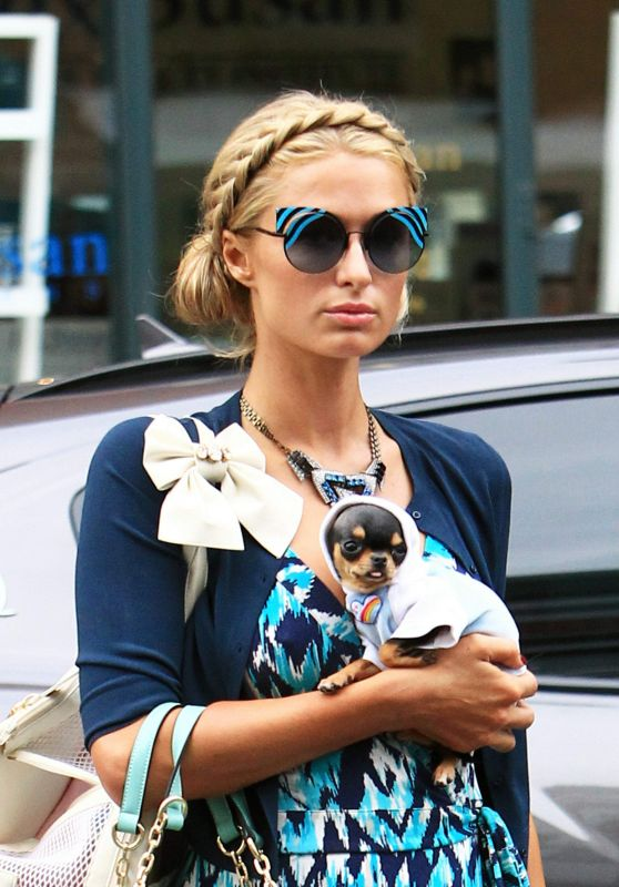 Paris Hilton With Her Puppy - Out in Beverly Hills 1/3/ 2017