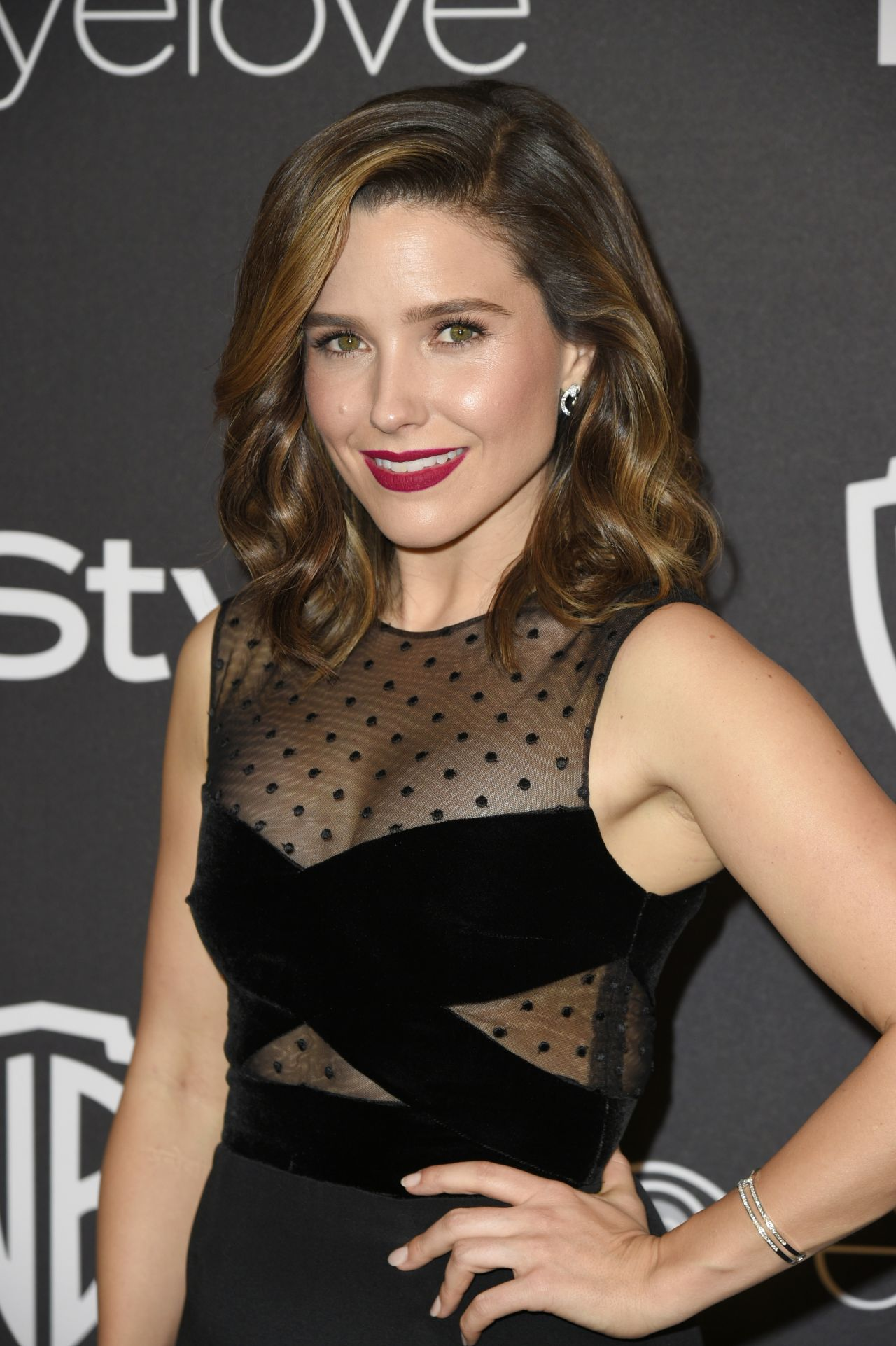 Sophia Bush Golden Globes 2017
