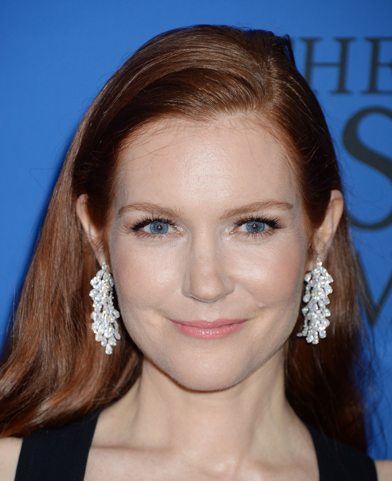 Darby Stanchfield Nude Photos 21