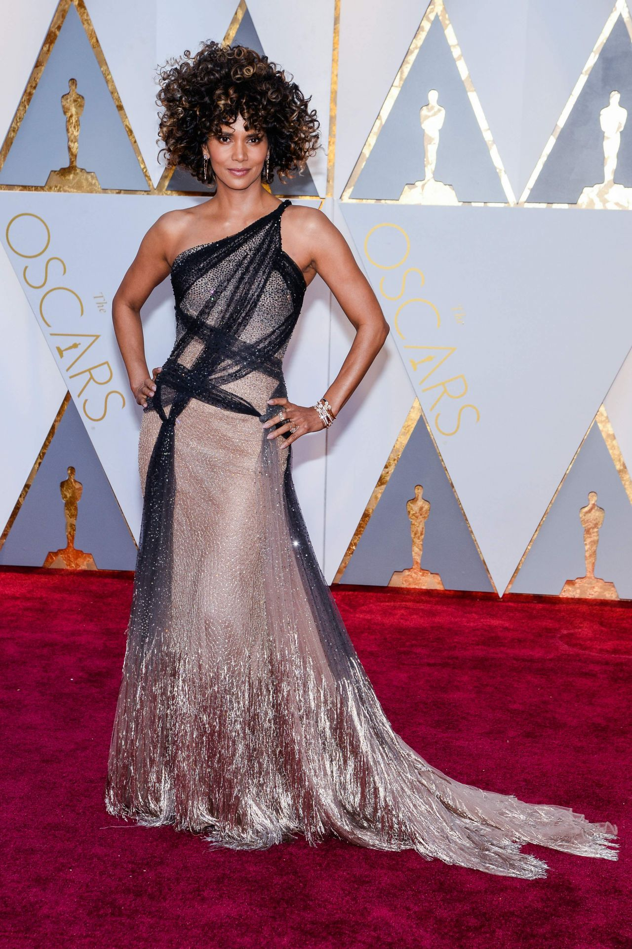 Halle Berry Oscars 2017 Red Carpet In Hollywood