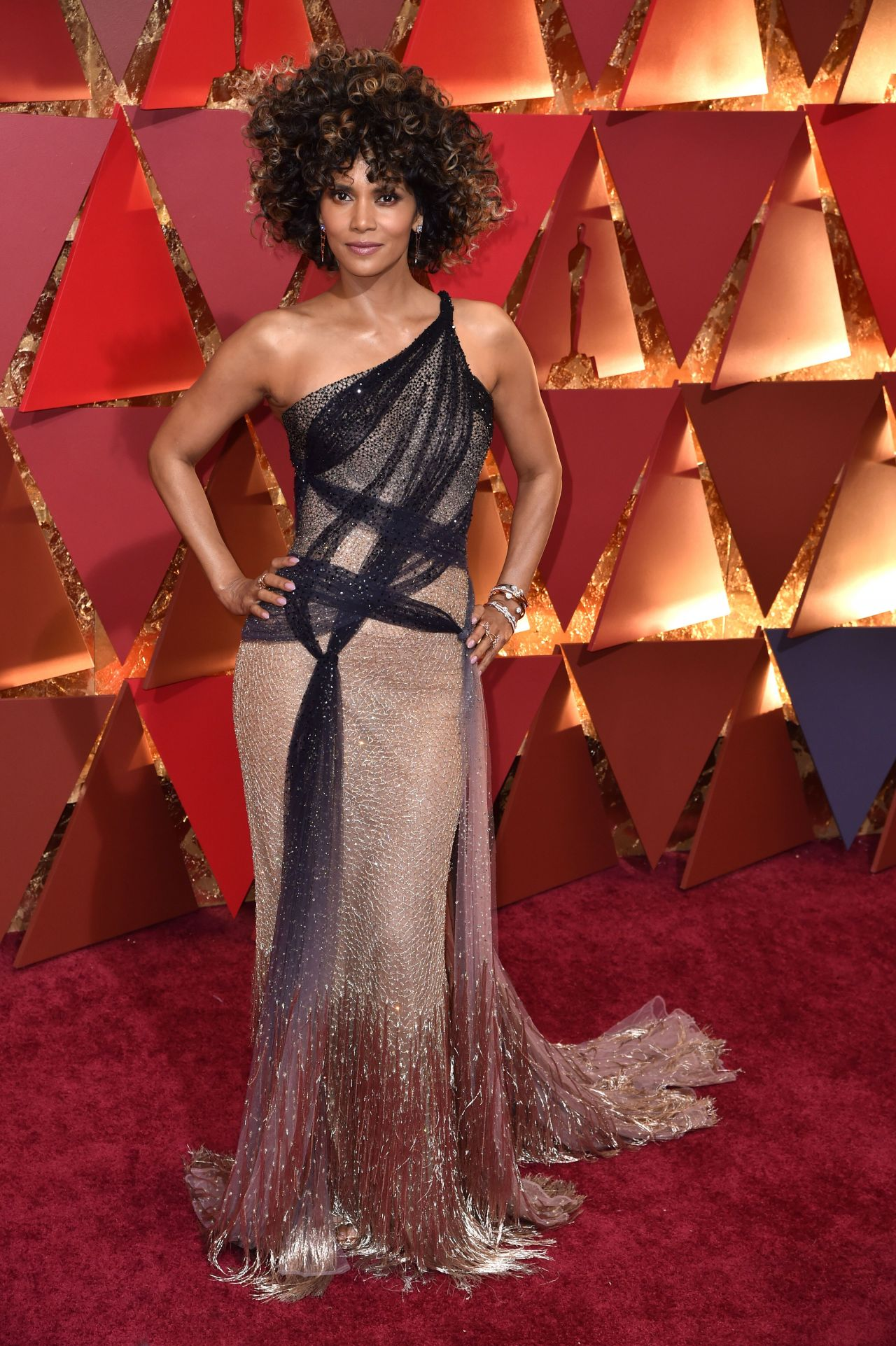 http://celebmafia.com/wp-content/uploads/2017/02/halle-berry-oscars-2017-red-carpet-in-hollywood-9.jpg