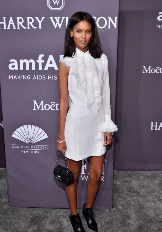 Liya Kebede at amfAR New York Gala Red Carpet, 2/8/ 2017