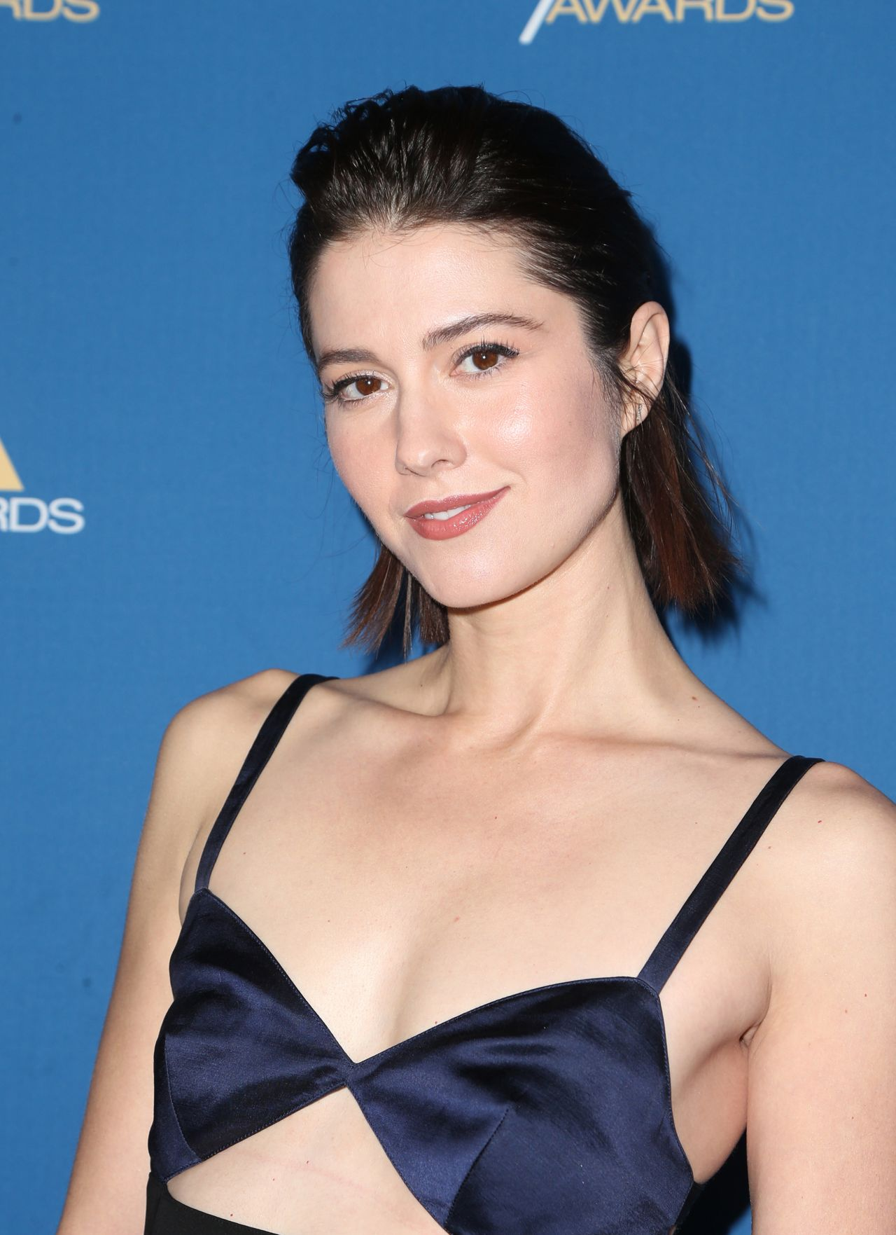 Mary Elizabeth Winstead Dga Awards In Beverly Hills Ca