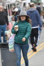 Rachel Bilson - Heads to the Farmers Market in LA 2/19/ 2017