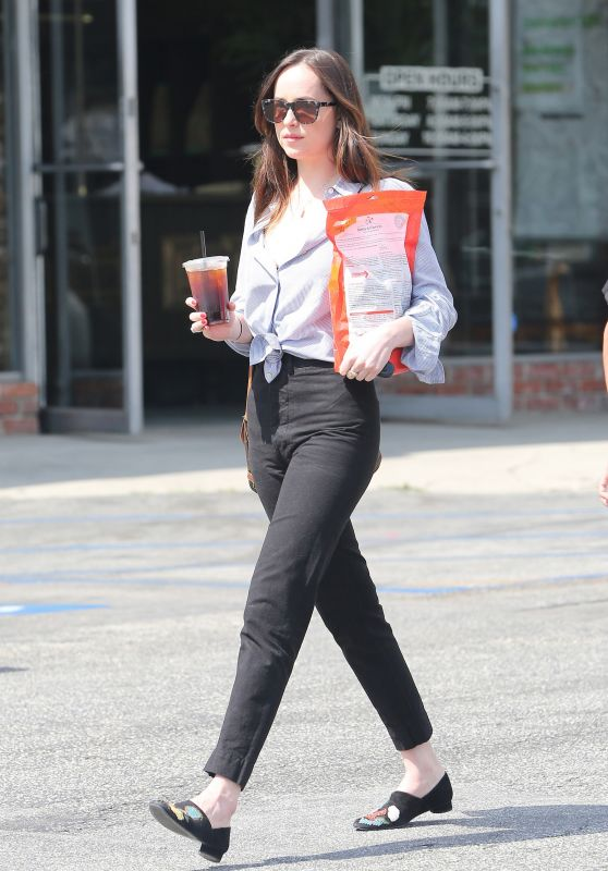 Dakota Johnson in Casual Attire - Shopping at a Pet Store in Los Angeles 3/20/ 2017