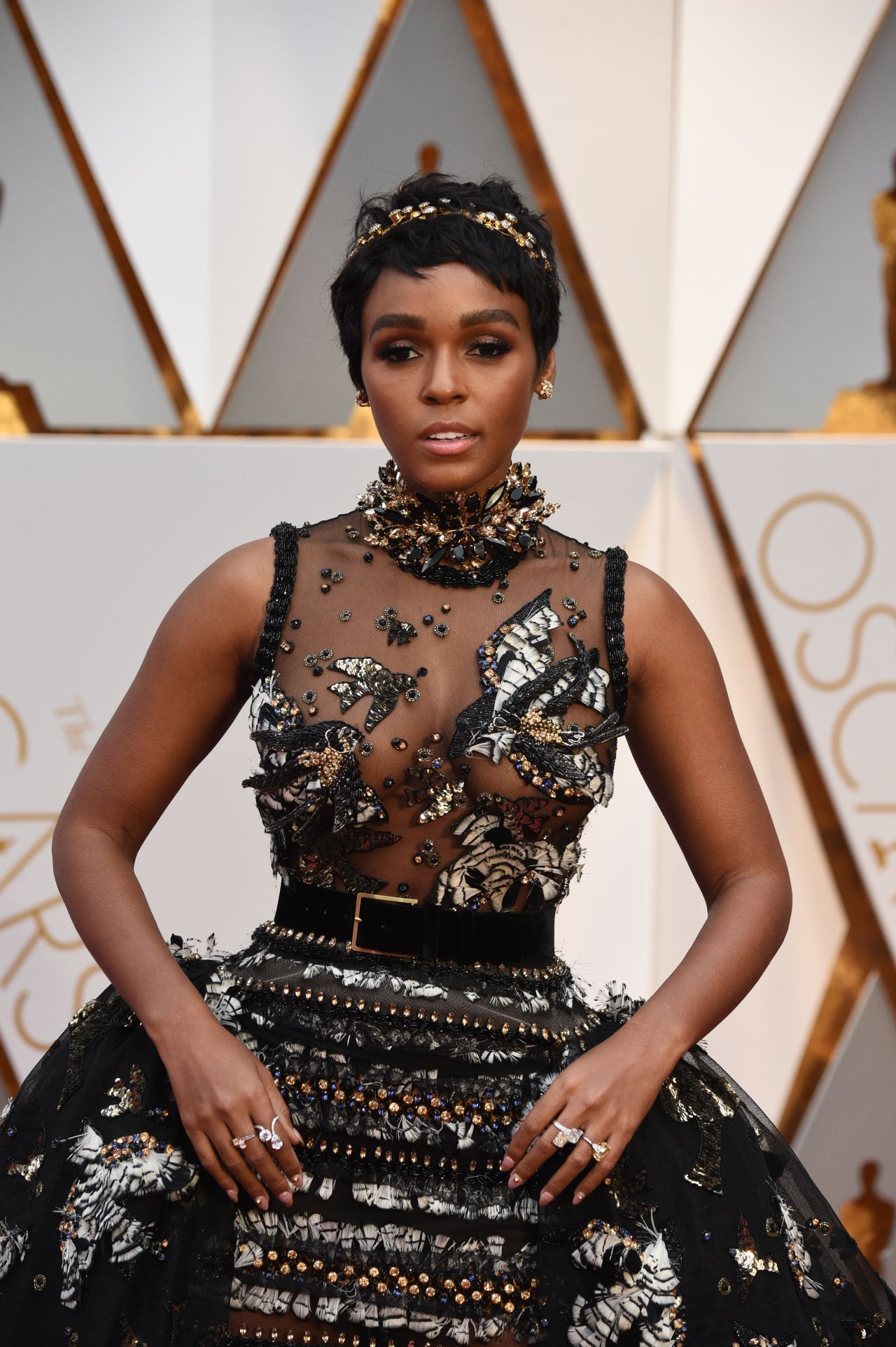 Janelle Monae – Oscars 2017 Red Carpet in Hollywood