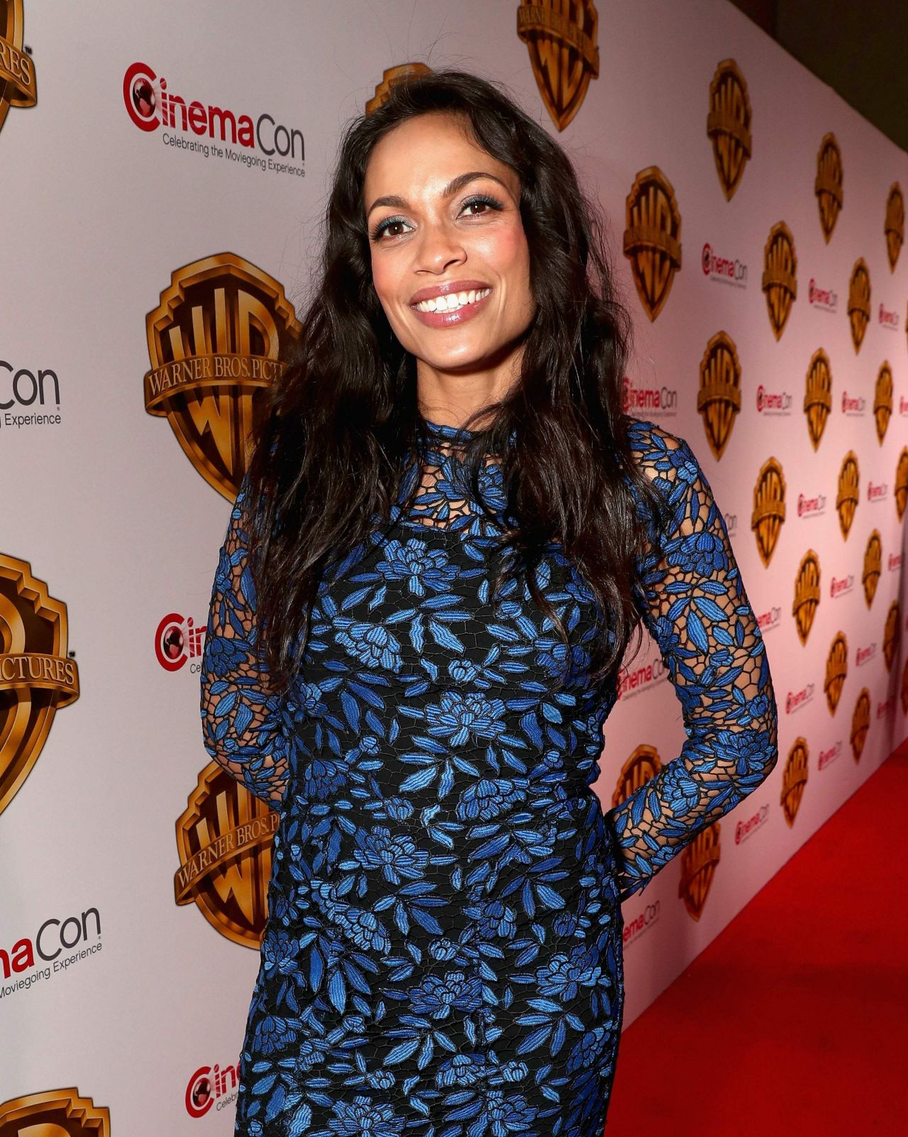 Rosario Dawson - Warner Bros. The Big Picture Presentation ... Rosario Dawson
