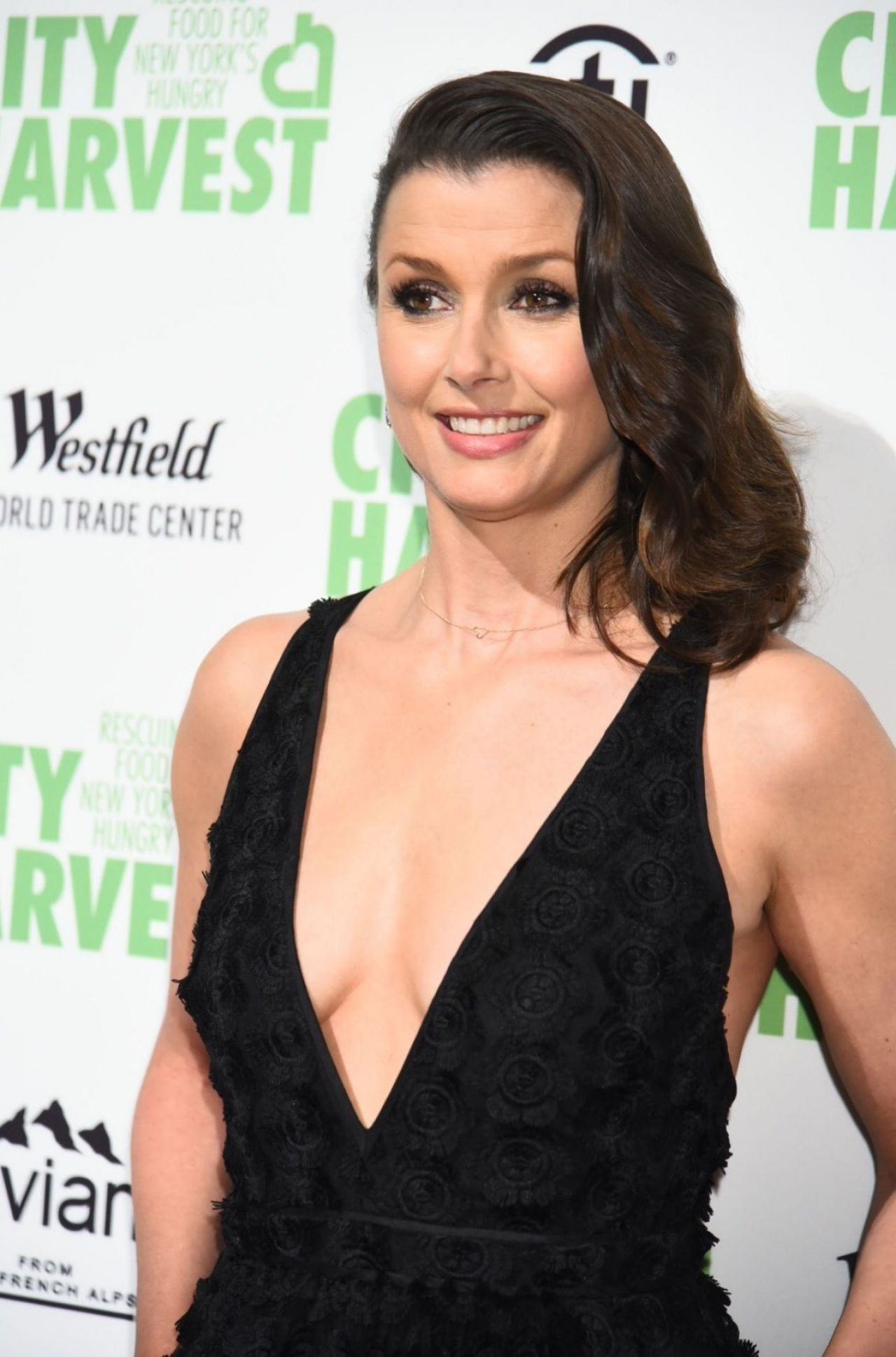 Bridget Moynahan Nude Photos 62