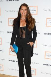 Brooke Shields - 2017 Tribeca Ball in New York City