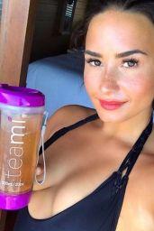 Demi Lovato in a Bikini - Social Media 04/24/2017