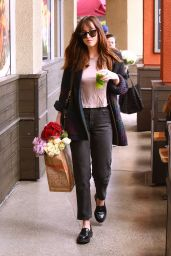 Dakota Johnson  in Casual Attire - Leaving Erewhon Grocery Store in LA 05/14/2017