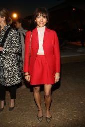 Rashida Jones – Dior Cruise Collection 2018 in LA 05/11/2017