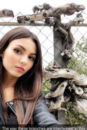 Victoria Justice Social Media Pics 05/10/2017