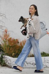 Cara Santana Street Style - Out With Her Dogs in Beverly Hills 06/08/2017