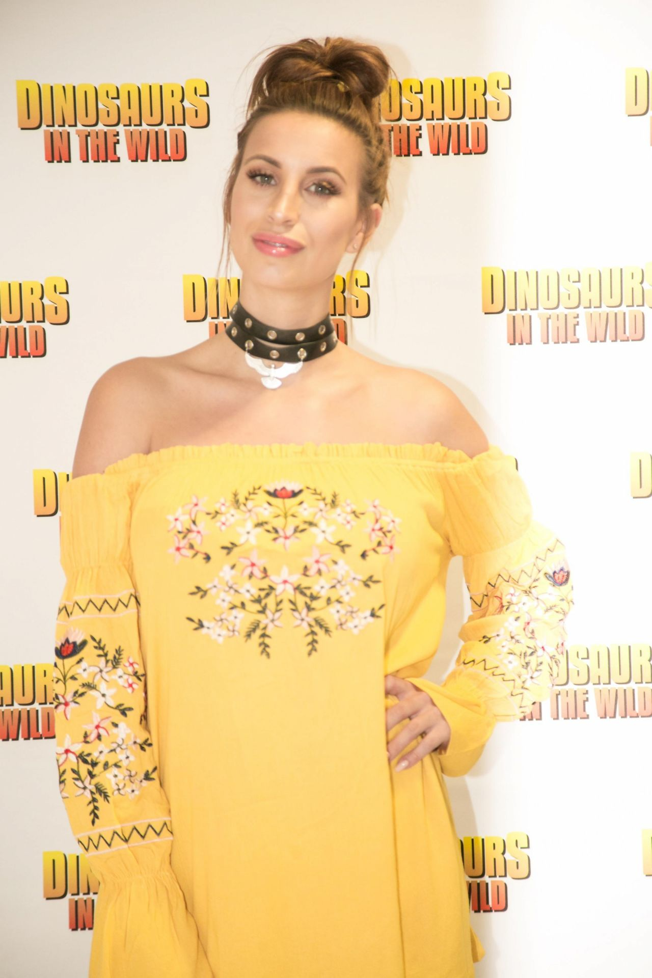 Ferne mccann dinosaurs in the wild opening in birmingham uk nude (76 photos), Is a cute Celebrites photo