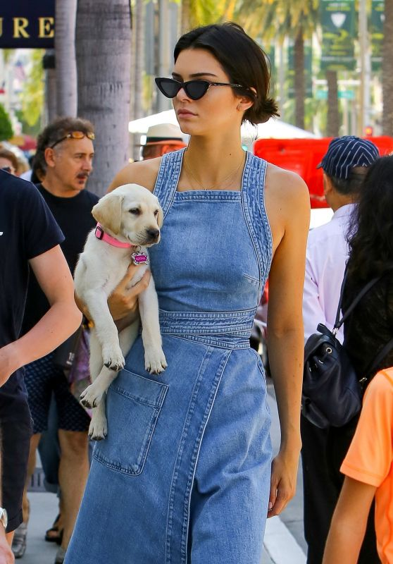 Kendall Jenner in Denim Dress - Out in Beverly Hills 06/18/2017