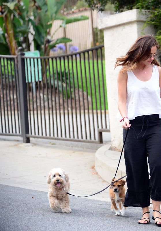 Minka Kelly With Her Dogs in Los Angele 06/26/2017
