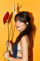 Camila Cabello - Billboard Hot 100 Fest (BTS) (2017)