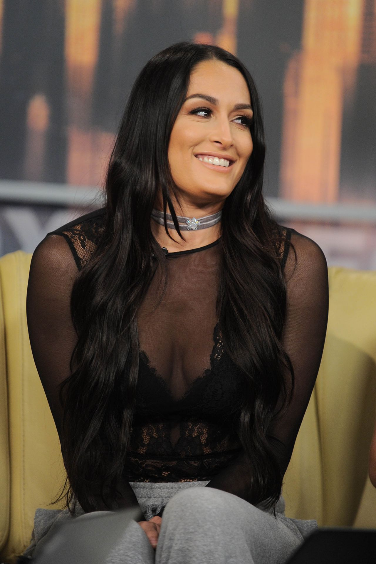 Nikki Bella and Brie Bella Appeared on Good Day New York ...