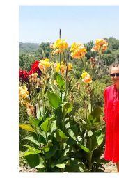 Rashida Jones - Social Media Pics 08/24/2017