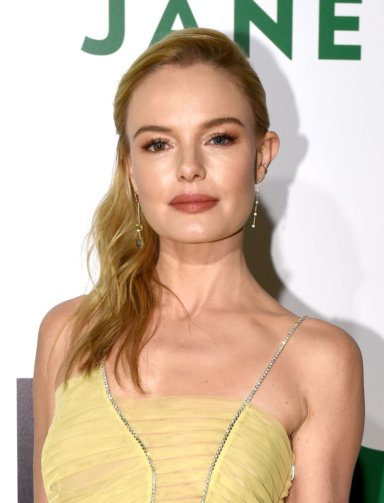 Kate Bosworth Filme