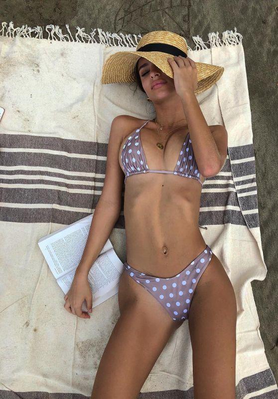Emily Ratajkowski in Bikini - Social Media 11/25/2017