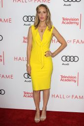 Kim Raver – Television Academy Hall of Fame Ceremony in North Hollywood 11/15/2017