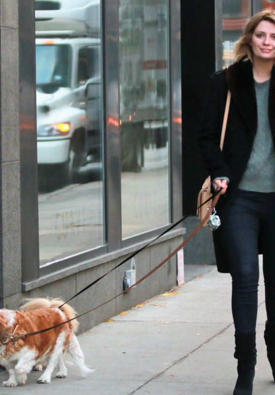 Mischa Barton - Walking Her Dogs in Manhattan, NYC 11/13/2017
