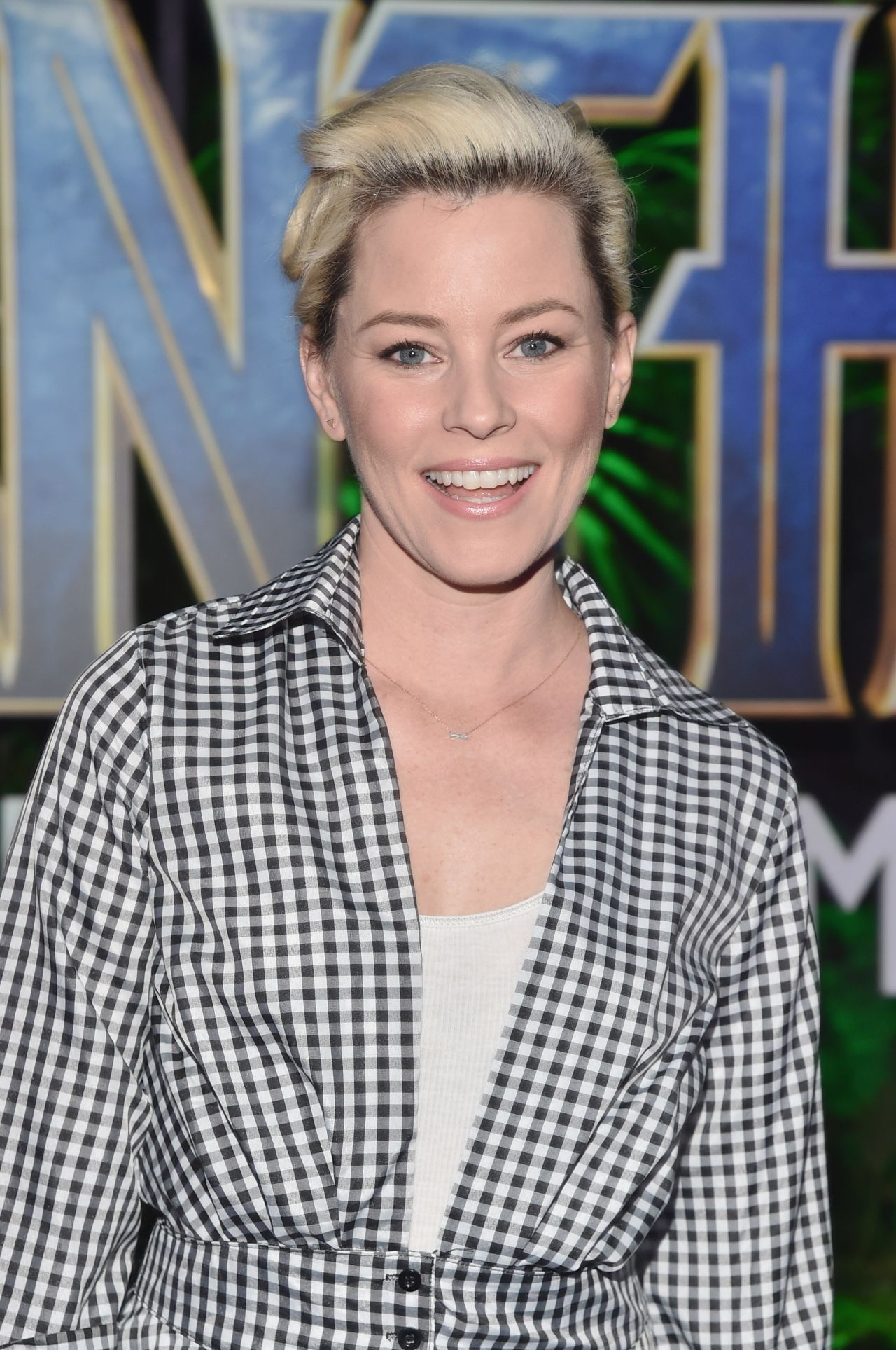 http://celebmafia.com/wp-content/uploads/2018/01/elizabeth-banks-black-panther-premiere-in-hollywood-1.jpg