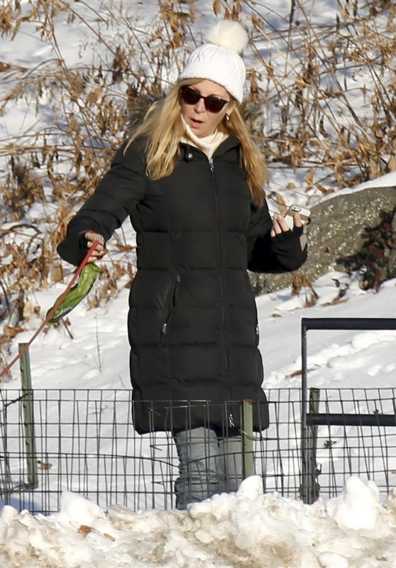 Jennifer Westfeldt is Walking Her Dog in Central Park in NYC