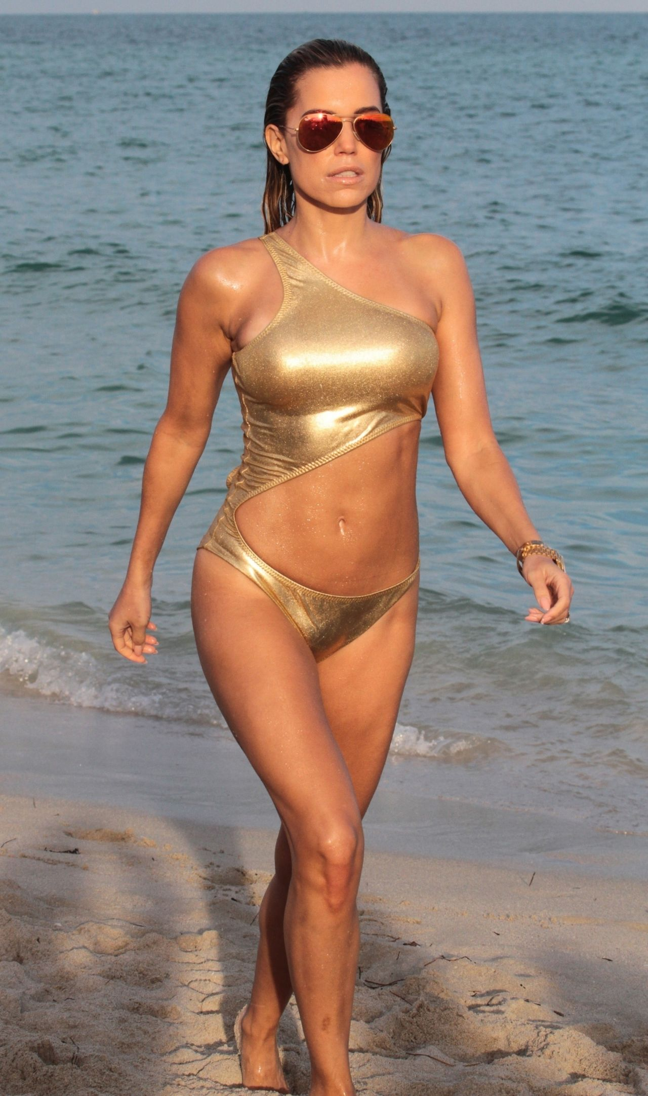 Sylvie Meis Hot In A Gold Bikini On The Beach In Miami-1831