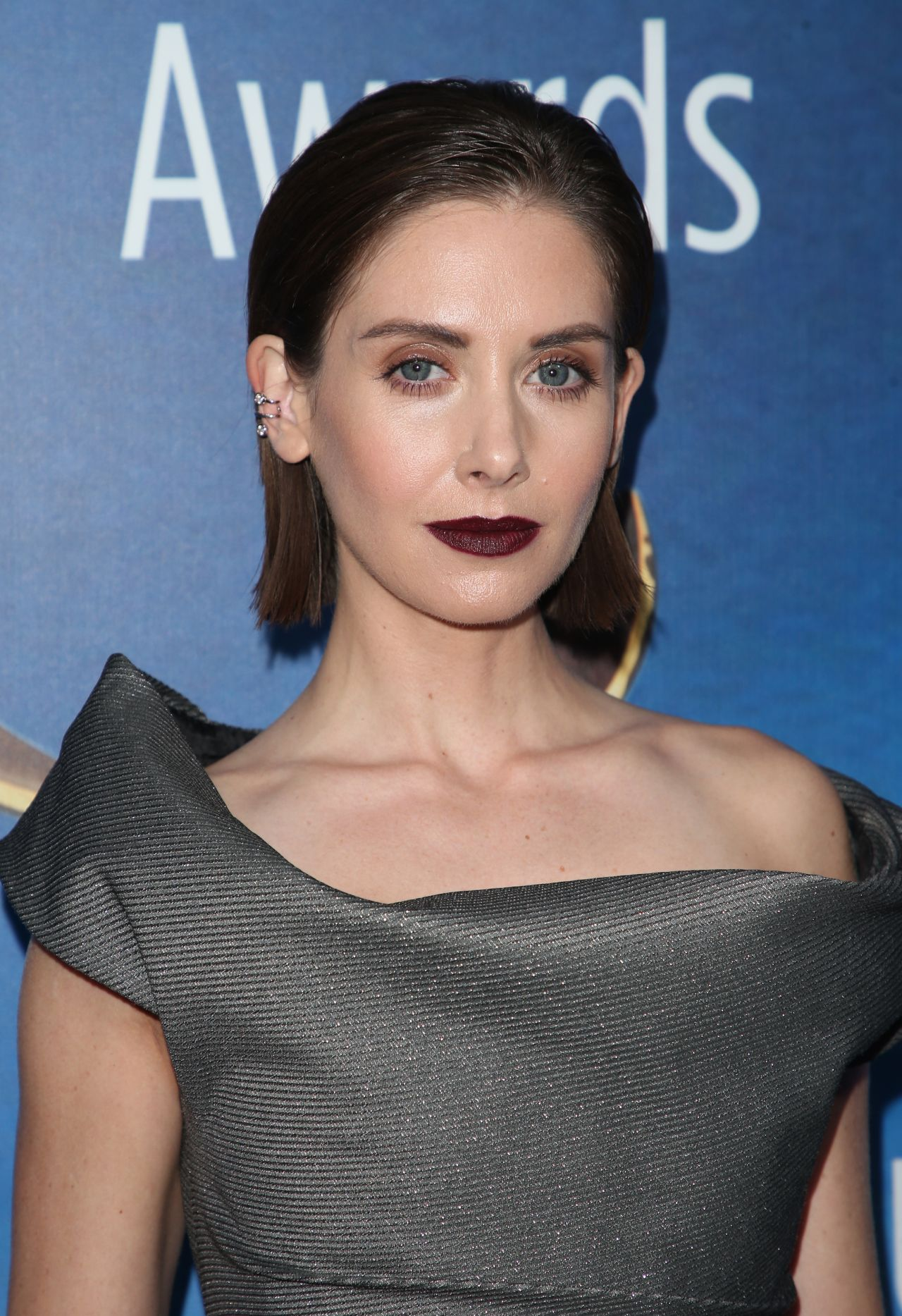 Alison Brie Writers Guild Awards 2018 Red Carpet