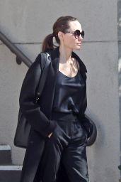 Angelina Jolie Stroll in Los Angeles 02/13/2018