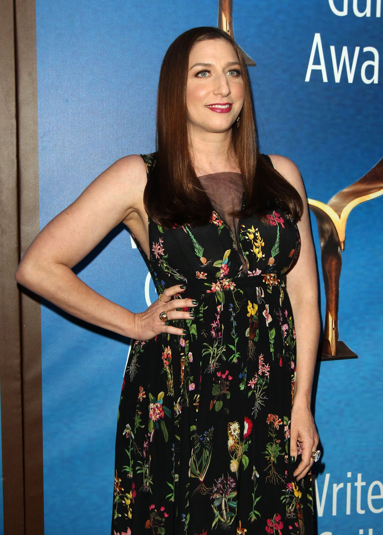 Chelsea Peretti Writers Guild Awards 2018 Red Carpet