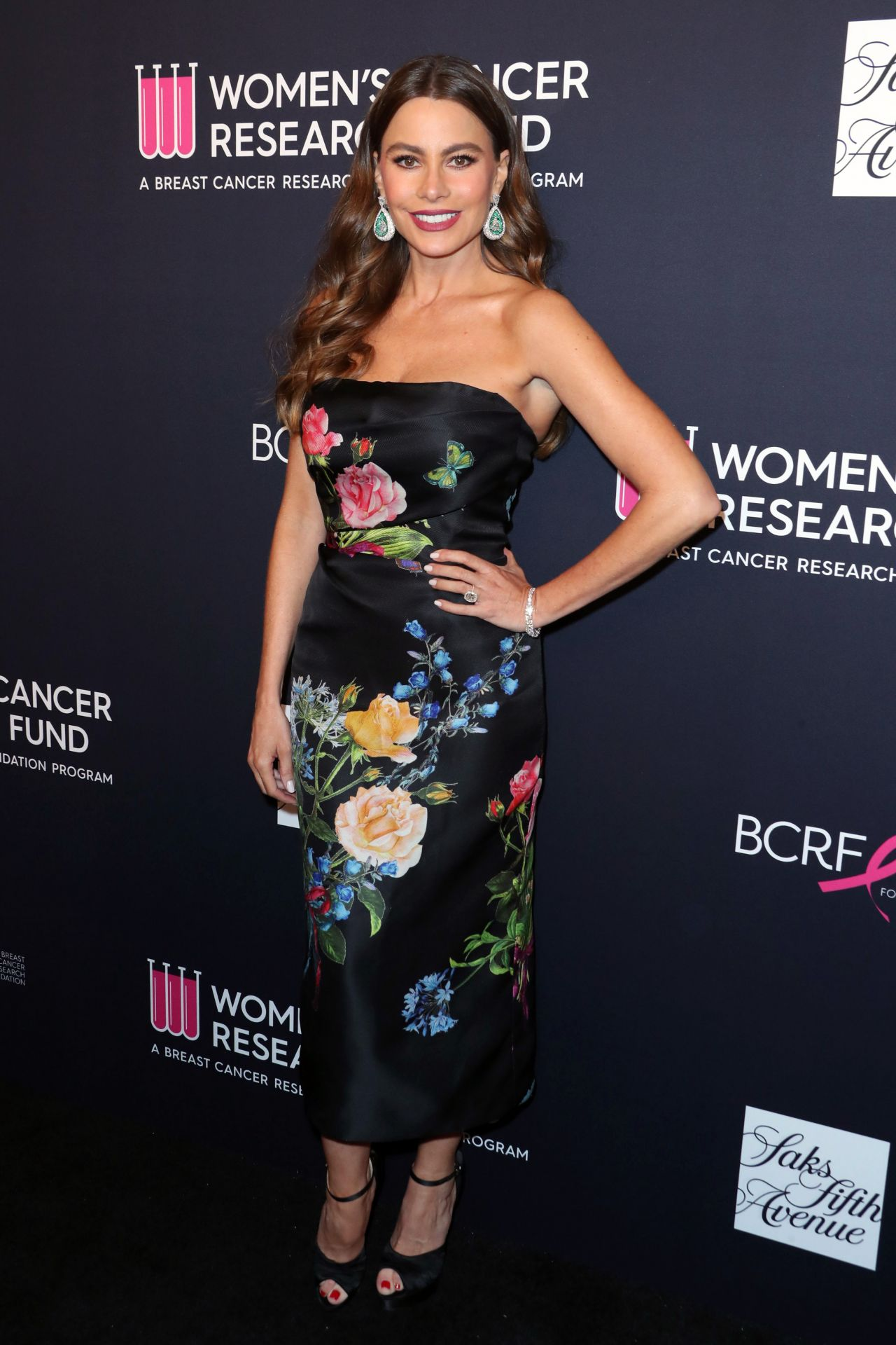 http://celebmafia.com/wp-content/uploads/2018/02/sofia-vergara-the-womens-cancer-research-fund-hosts-an-unforgettable-evening-in-la-02-27-2018-8.jpg