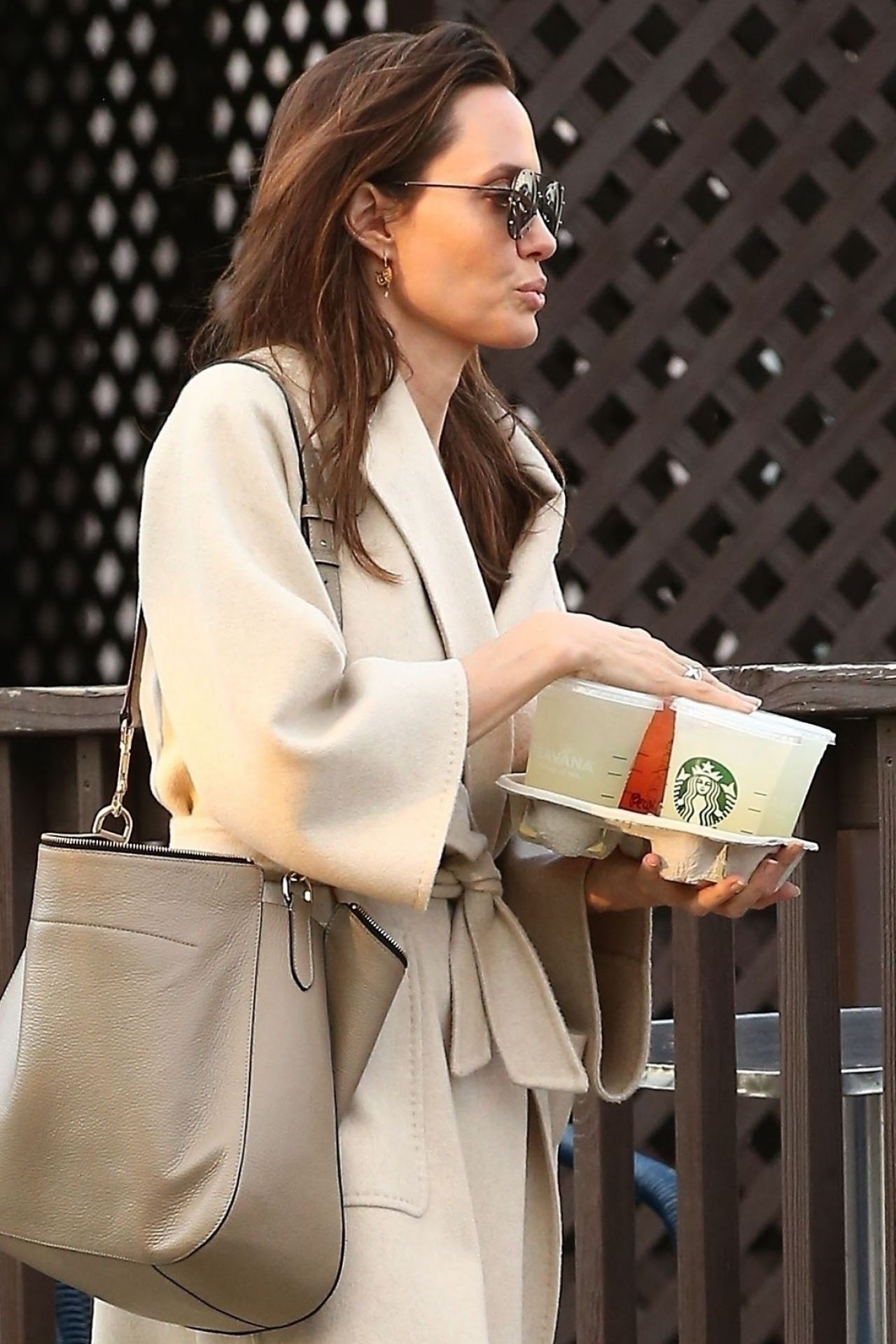 Angelina Jolie Shopping Around Studio City March 2018