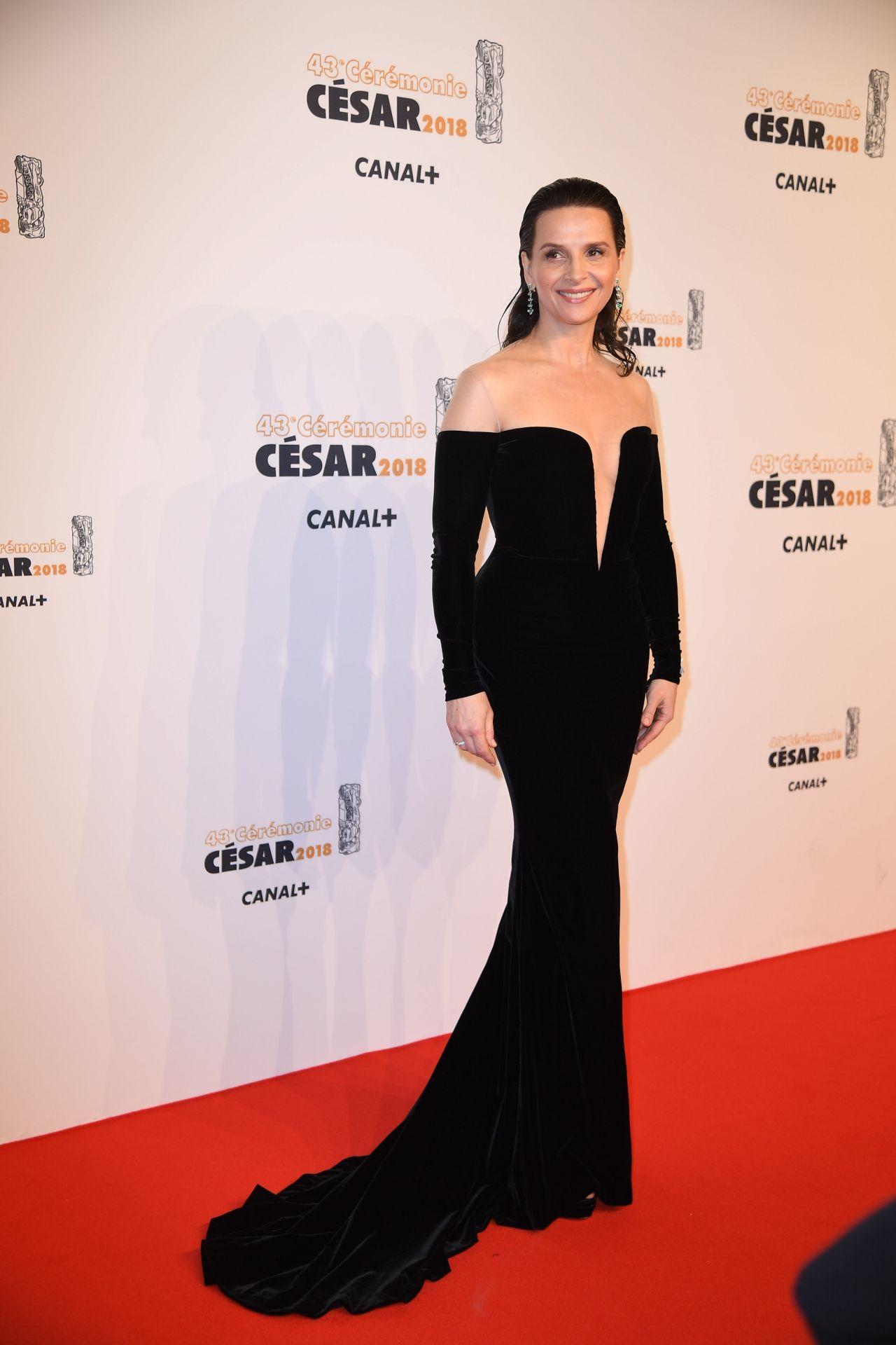 http://celebmafia.com/wp-content/uploads/2018/03/juliette-binoche-cesar-film-awards-2018-in-paris-3.jpg