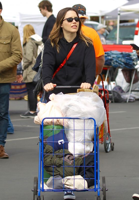 Sophia Bush - Shopping at the Melrose Trading Post in LA