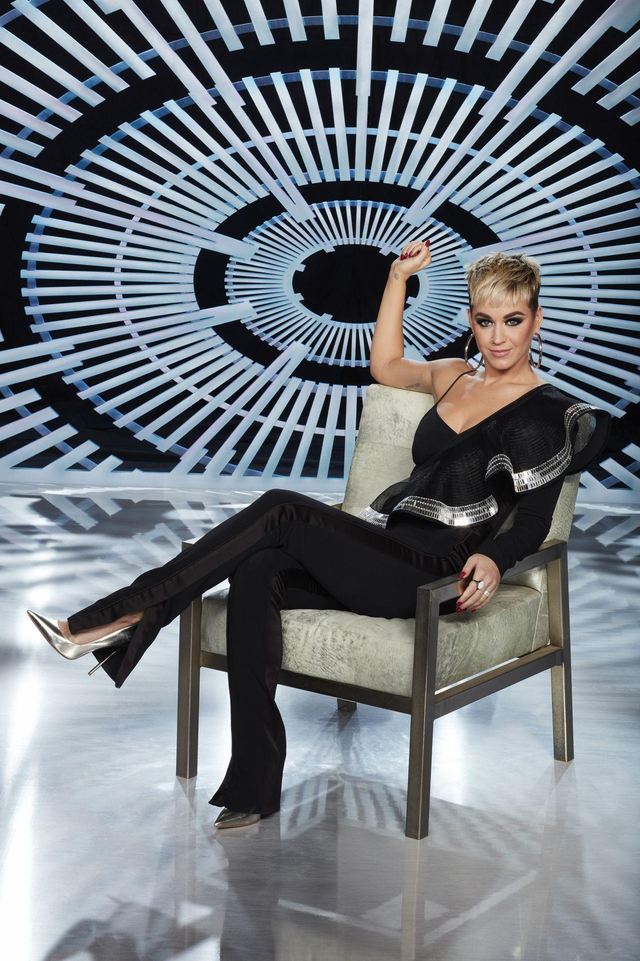 Katy Perry American Idol Portraits