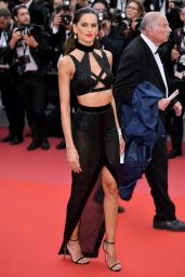 """Izabel Goulart – """"Solo: A Star Wars Story"""" Red Carpet in Cannes"""