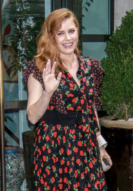 Amy Adams in New York City 07/31/2018