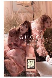Dakota Johnson - Gucci