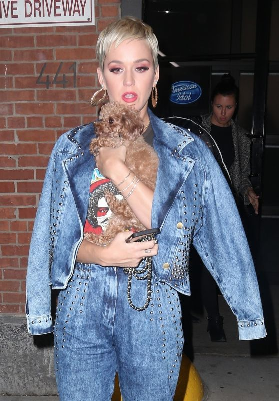 Katy Perry - Leaving the American Idol Auditions in NYC 10/30/2018