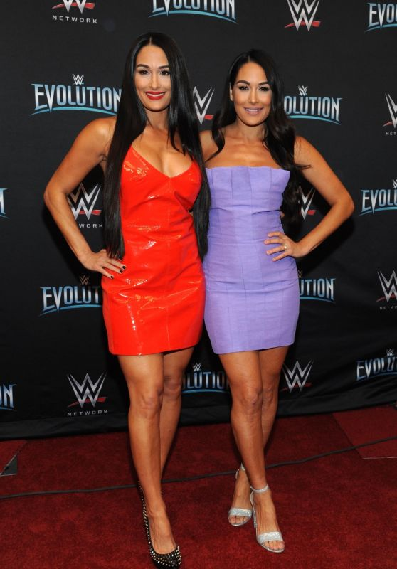 Nikki and Brie Bella - WWE