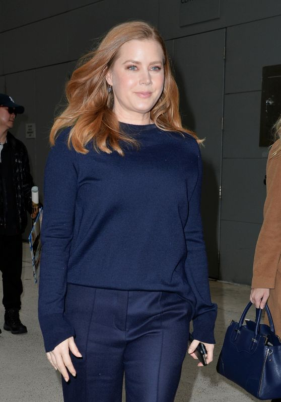 Amy Adams Casual Style 11/26/2018