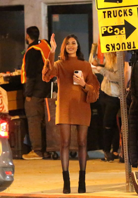 Olivia Culpo - Her Latest Project Set in Los Angeles 11/28/2018